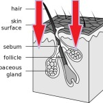 How To Make Your Laser Growth Treatment To Be More Effective!